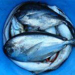 Egészséges táplálkozás-a tenger lehetőségei