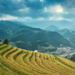 Zöld Kína- ez a jövő Kínája?
