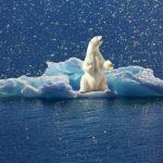 Zárult a bonni klímakonferencia