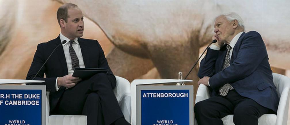 Vilmos herceg interjút készített D. Attenborough-val Davosban
