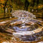 Hatékonyabb vízfelhasználás szükséges az élelmiszeróriásoknál